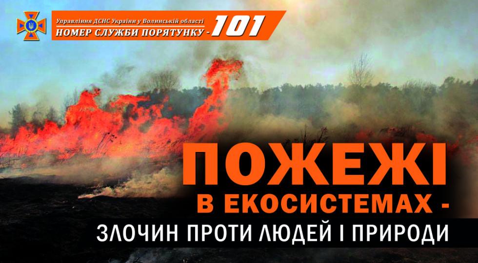 Маневицькі рятувальники закликають не палити суху траву