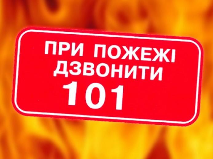 Маневицькі рятувальники нагадали про правила пожежної безпеки на виборчих дільницях