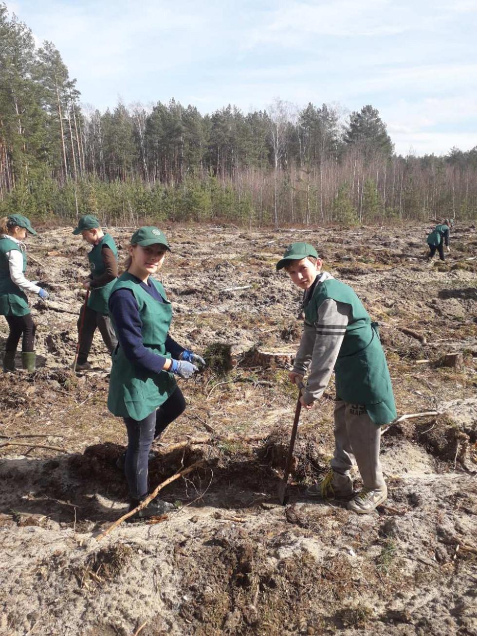 У Галузії провели акцію «Майбутнє лісу в твоїх руках»