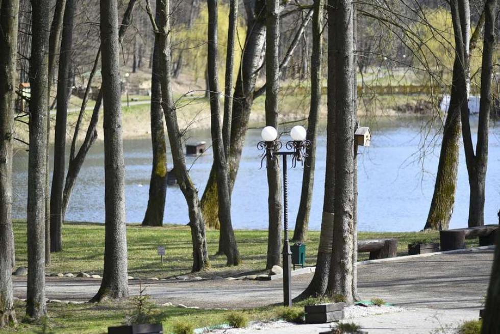 Лісівники назвали найпопулярніші рекреаційні зони на Волині