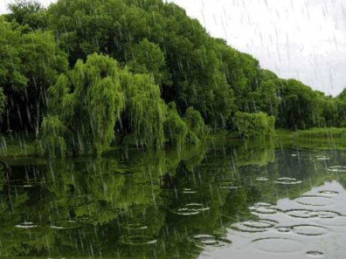 Прогноз погоди у Маневичах на 7 травня