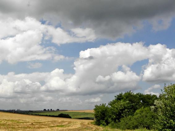Прогноз погоди у Маневичах на 28 червня