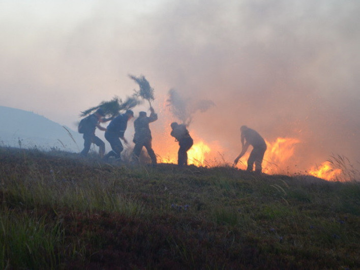 Жителів Маневицького району просять припинити спалювати суху стерню