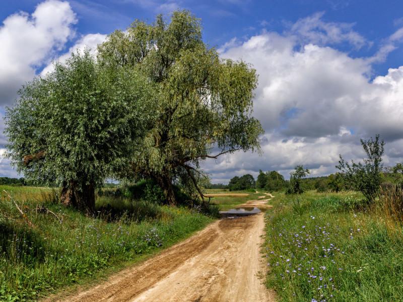 Прогноз погоди у Маневичах на 18 серпня