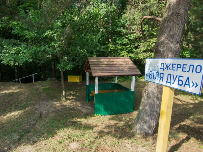 Лісники Маневицького району відновили та впорядкували природнє джерело «Біля дуба»