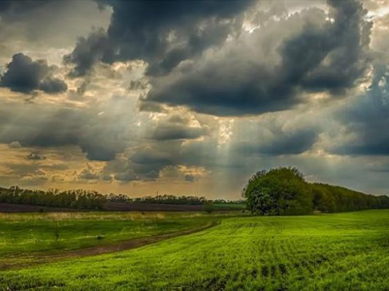 Прогноз погоди у Маневичах на 29 серпня