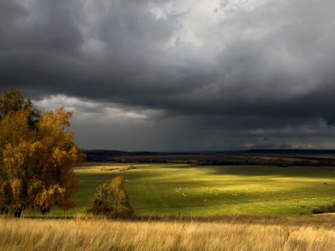 Прогноз погоди у Маневичах на 31 серпня