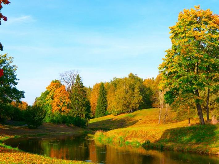 Прогноз погоди у Маневичах на 5 вересня