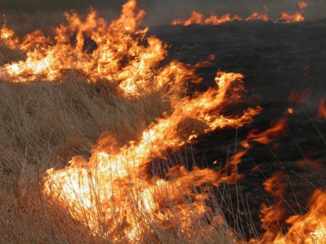 Маневичан попередили про кримінальну відповідальність за спалювання сухостою