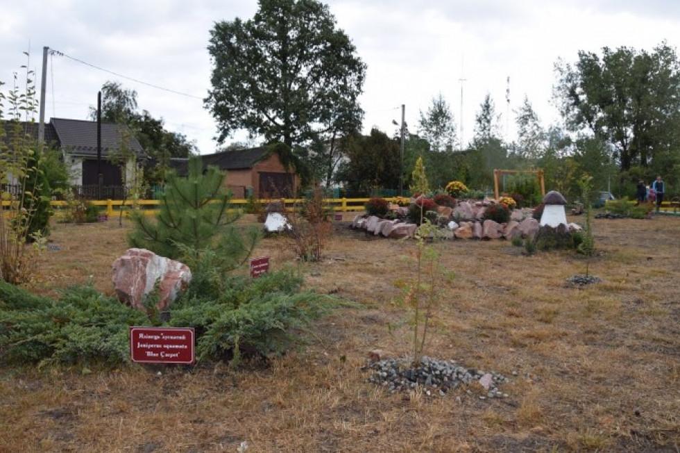 У Маневичах відкрили дендрологічний парк