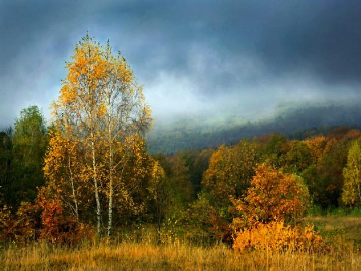 Прогноз погоди у Маневичах на 28 вересня