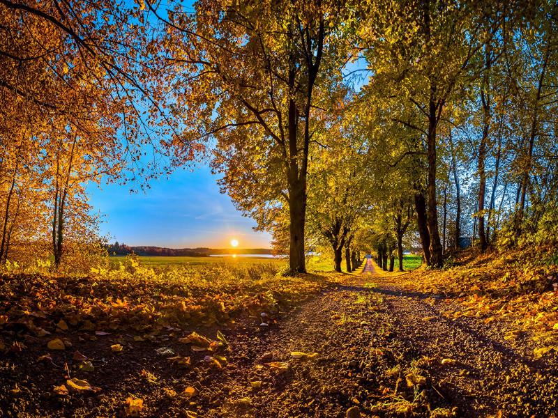 Прогноз погоди у Маневичах на 1 жовтня