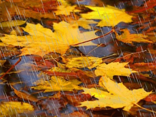 Прогноз погоди у Маневичах на 3 жовтня