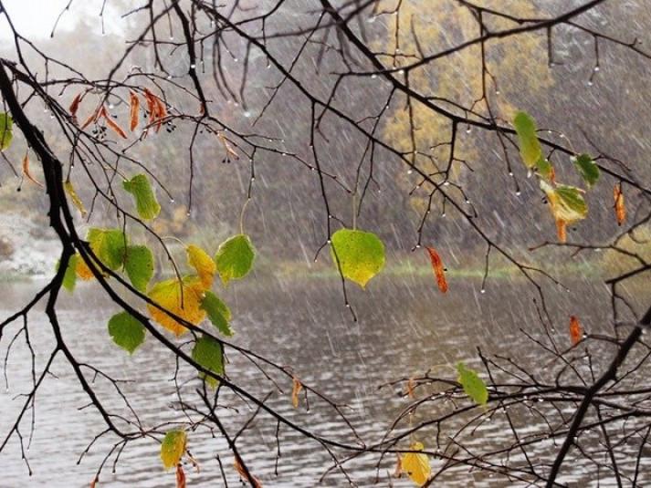 Прогноз погоди у Маневичах на 10 жовтня