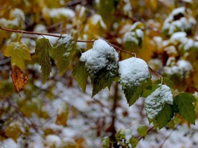 Прогноз погоди у Маневичах на 21 листопада