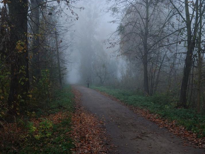Прогноз погоди у Маневичах на 26 листопада