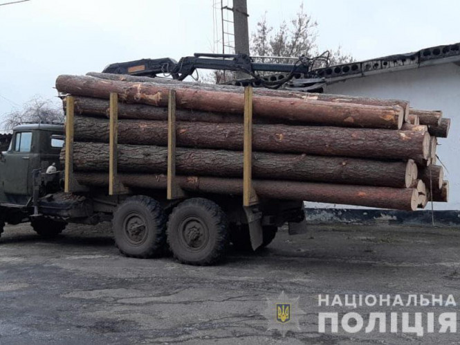 У маневицьких крадіїв лісу вилучили майже 200 метрів кубічних деревини