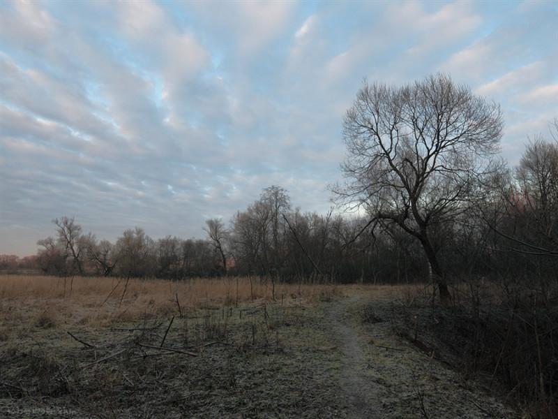 Прогноз погоди у Маневичах на 10 грудня
