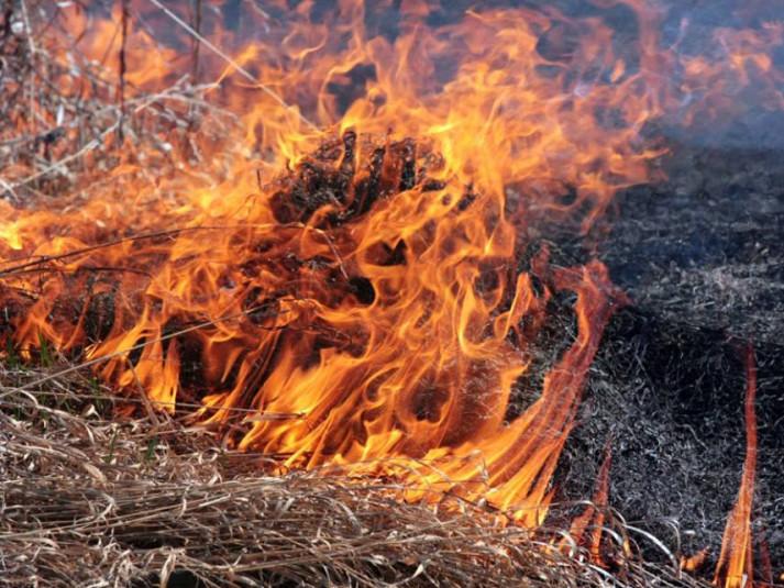 Жителям Маневицького району розповіли про наслідки спалювання сухої рослинності