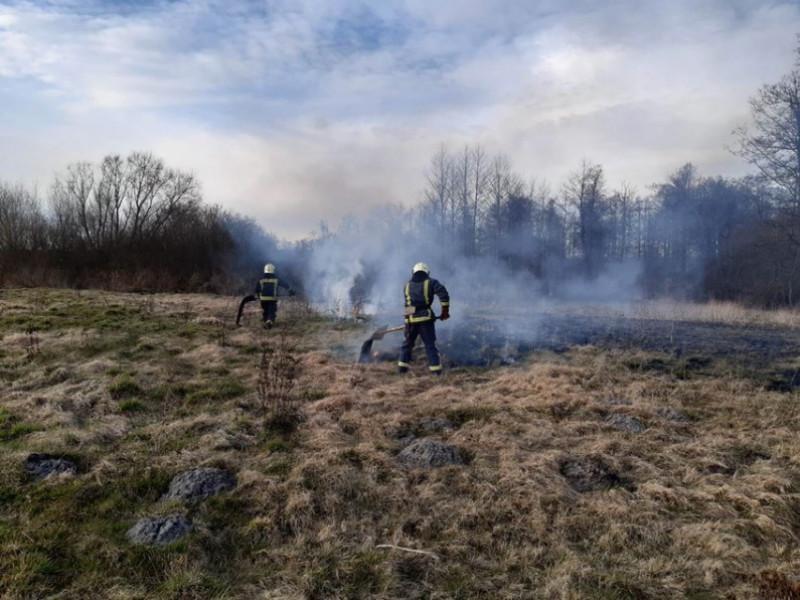 За минулу добу в області сталося 13 пожеж сухої трави – двіз них на Маневиччині