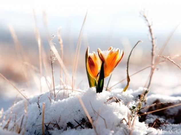 Прогноз погоди у Маневичах на 24 березня