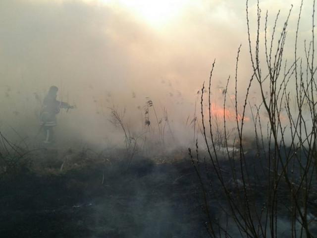 На Волині за минулий тиждень рятувальники ліквідували 141 пожежу
