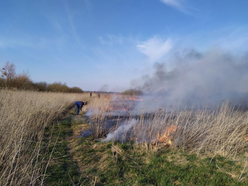 Маневицькі рятувальники ліквідували пожежу в екосистемі