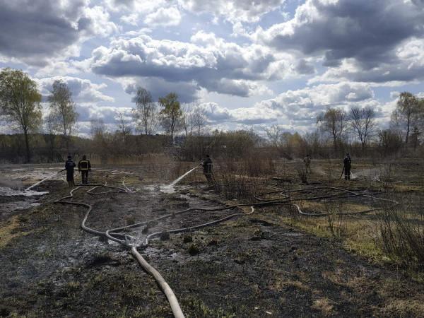 У Маневицькому районі гасили пожежу на території 2 гектарів