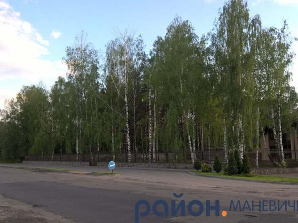 Прогноз погоди у Маневичах на 31 липня