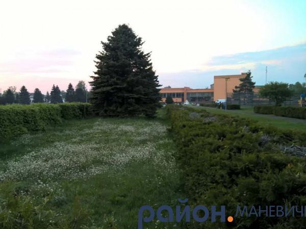 Прогноз погоди у Маневичах на 4 серпня