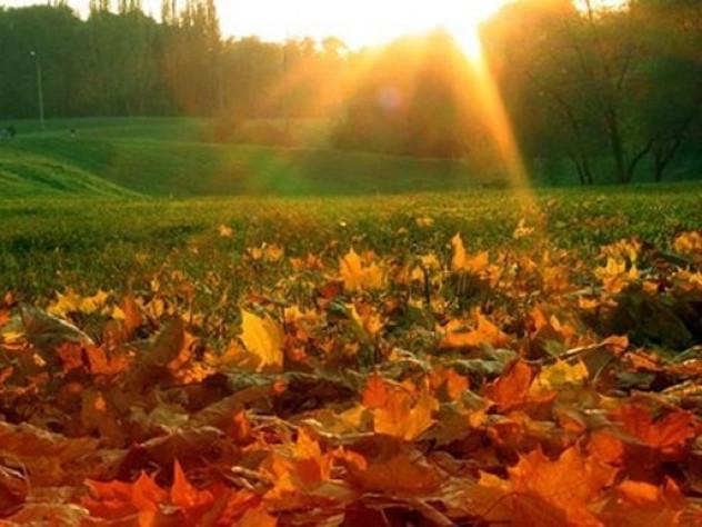 Прогноз погоди у Маневичах на 15 листопада