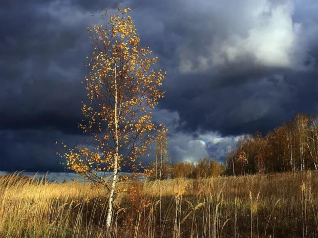 Прогноз погоди у Маневичах на 20 листопада
