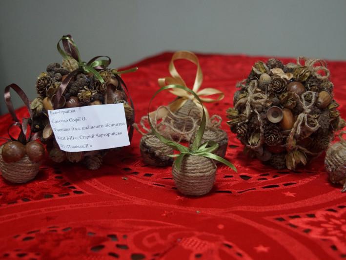 Серед учнівської молоді Маневиччини провели еколого-лісівничий конкурс