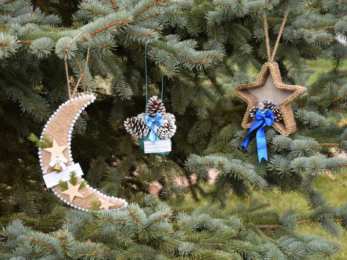 У Маневичах серед дітей провели еколого-лісівничий конкурс