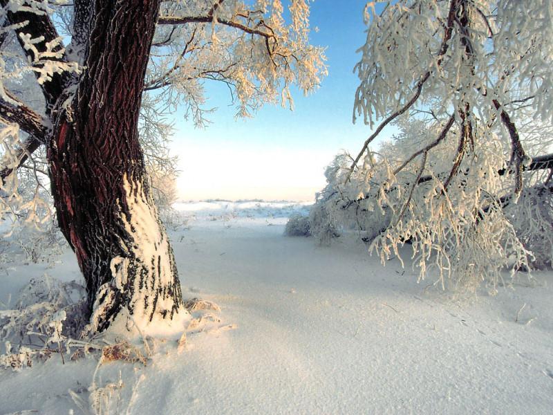 Прогноз погоди у Маневичах на 14 січня