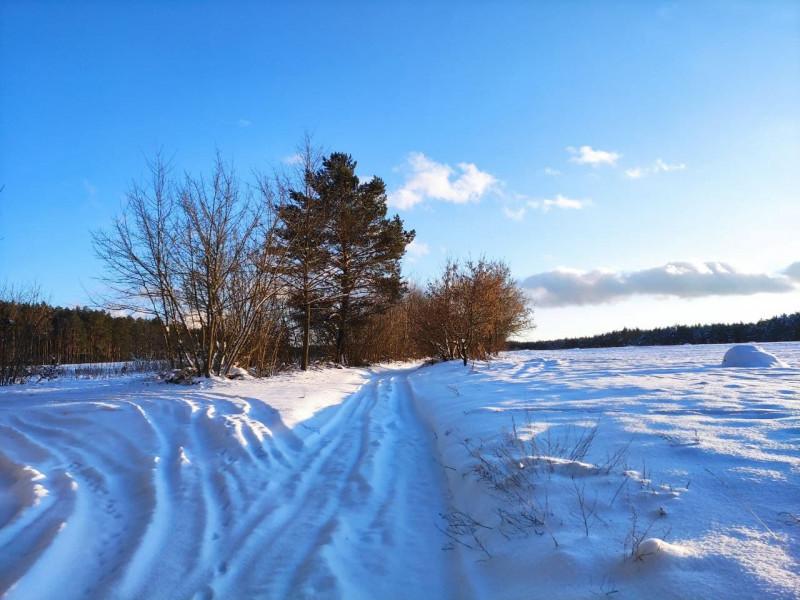 Прогноз погоди у Маневичах на 17 лютого