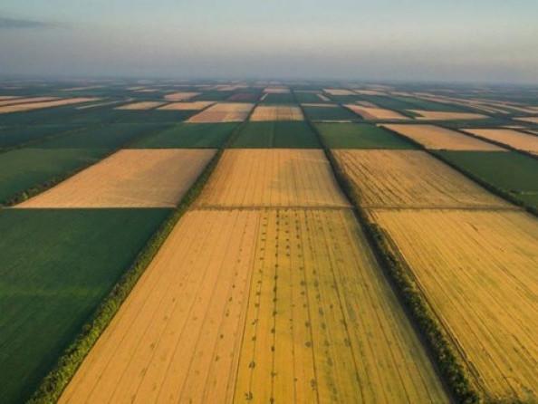Як оформити право власності на земельну частку (пай)