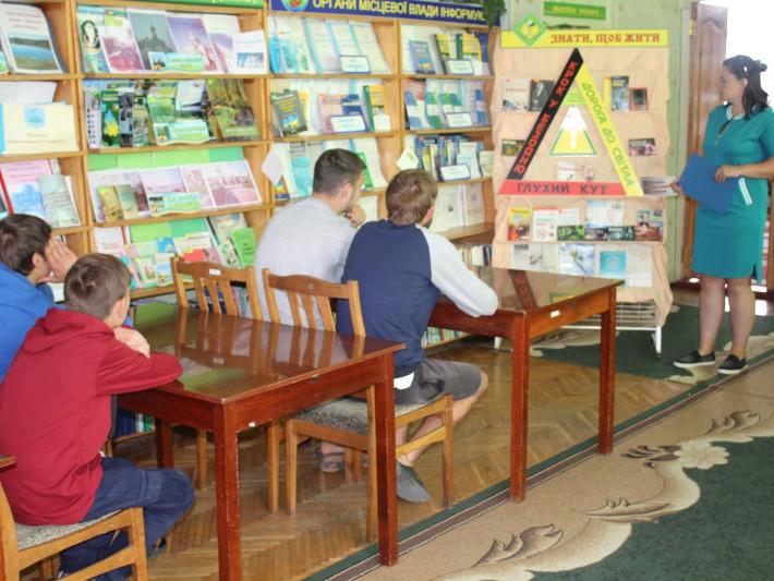 Працівниками Маневицької районної бібліотеки було організовано книжкову виставку «Дорога в безодню»