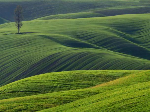 Приголомшливі краєвиди Волині: фотопідбірка