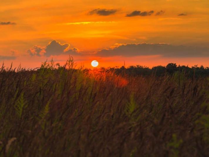 Вечір у літню пору року на Волині: фото