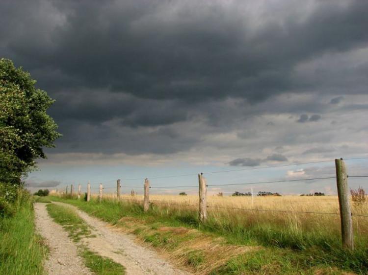 Погода у Маневичах на 17 липня