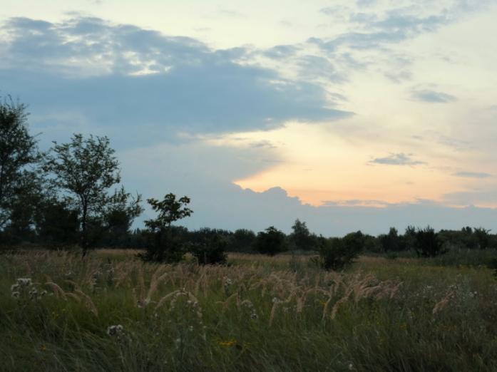 Прогноз погоди у Маневичах на 13 серпня