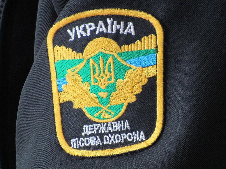 Маневиччина: крадену деревину виявили в Рівненській області