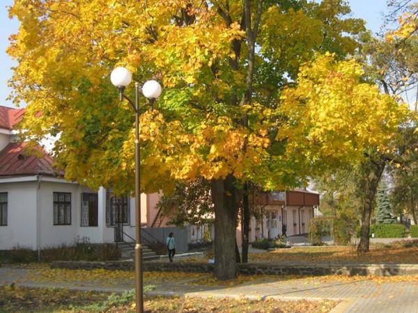 Прогноз погоди у Маневичах на 26 жовтня