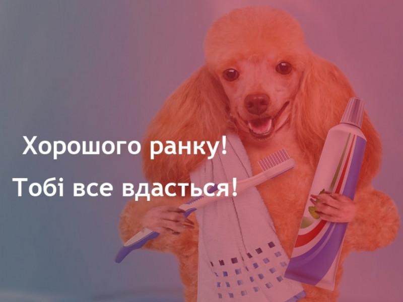Прогноз погоди у Маневичах на 11 листопада