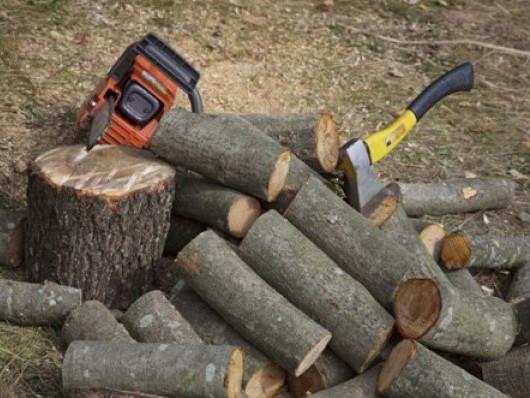 «Маневицьке ліове господарство» реалізовує паливні дрова для населення