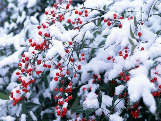 Прогноз погоди у Маневичах на 2 січня