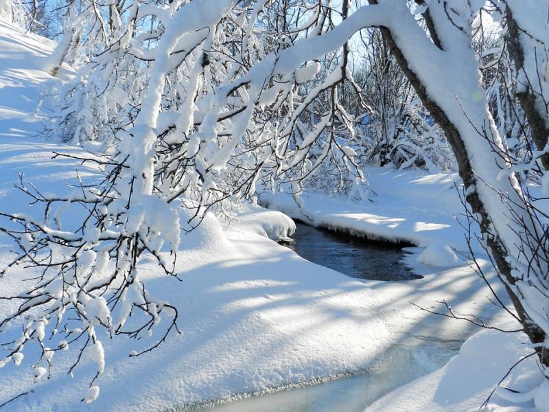 Прогноз погоди у Маневичах на 12 січня