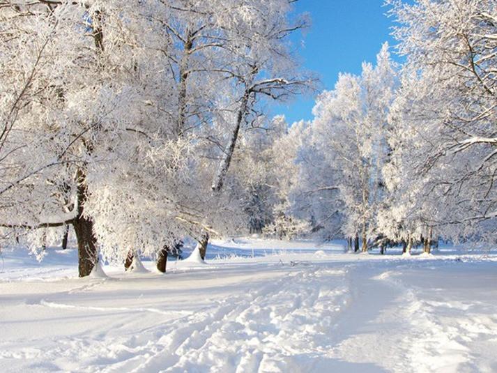 Прогноз погоди у Маневичах на 17 січня