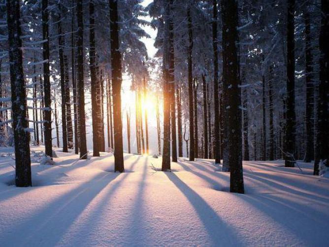 Прогноз погоди у Маневичах на 18 січня